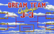 Dream Team - 3 on 3 Challenge, The - náhled